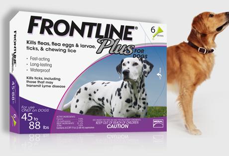 Fronline plus