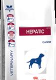 hepatic_large