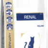renal-dry_large